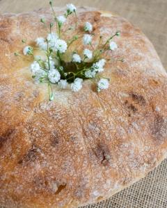Food Photography Portfolio at ildiva.com - Maltese Ftira (Bread)